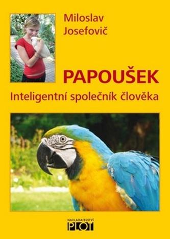 Papoušek - Inteligentní společník člověka