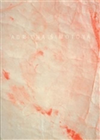 Adriena Šimotová: Hosté, tvorba z let 2000 – 2006
